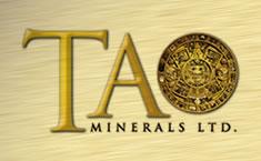 TAON logo