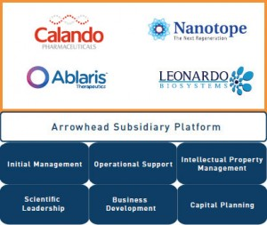 Arrowhead Research subsidiaries